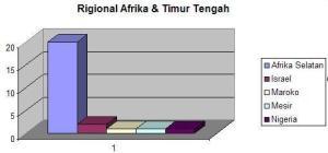 Regional Afrika dan Timur Tengah