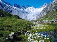 Pegunungan Alpen, Swiss