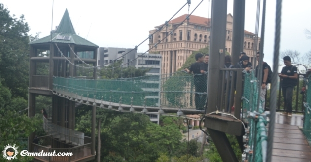 canopy-walk-2