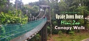3 Tempat Wisata Seru di Sekitar Menara Kuala Lumpur : Upside Down House, Canopy Walk & MiniZoo