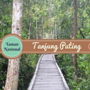 Abu Nawas di Taman Nasional TanjungPuting