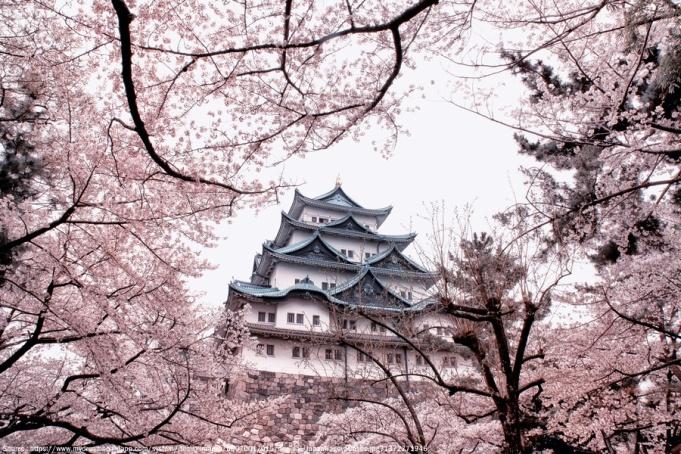 amazing-castle-nagoya