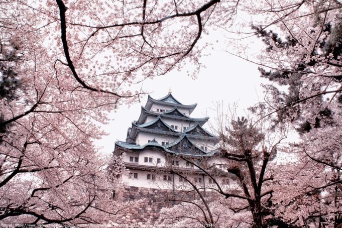 amazing-castle-nagoya