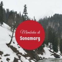 Membeku di Padang Rumput Emas : Sonamarg, Kashmir
