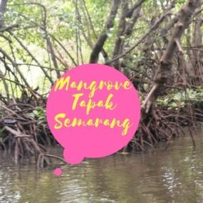 Pesona Mangrove TapakSemarang