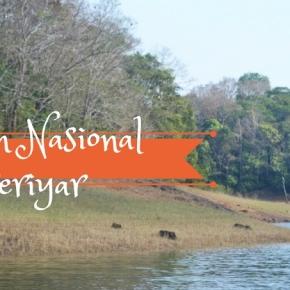 Jiya Jale di Taman NasionalPeriyar