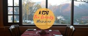 Nikmatnya Menginap di KTDC Tea County Munnar,India